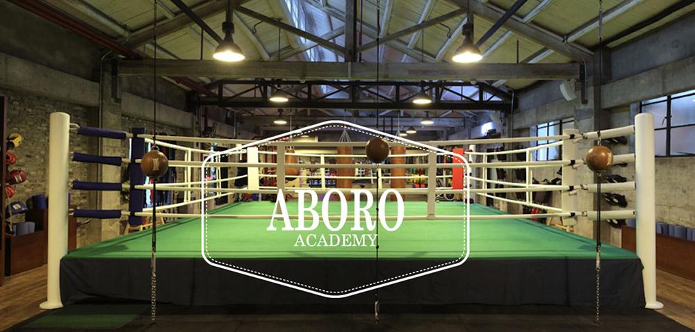 Aboro Academy